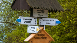 Oznaczenia szlaków turystycznych w Polsce, co znaczą kolory szlaków pieszych